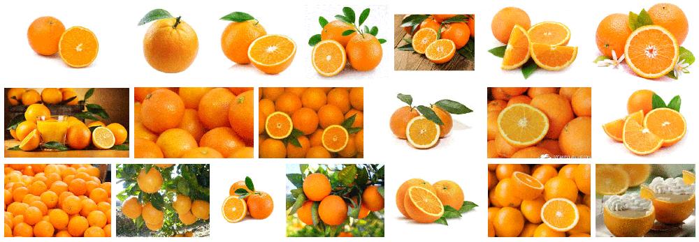 Foto de muchas naranjas desplazadas a domicilio en Barcelona.