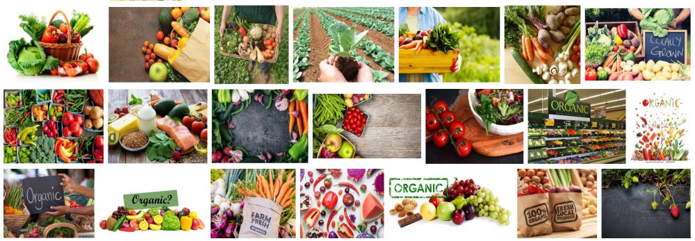 ORGANIC FOOD HOME DELIVERY BARCELONA