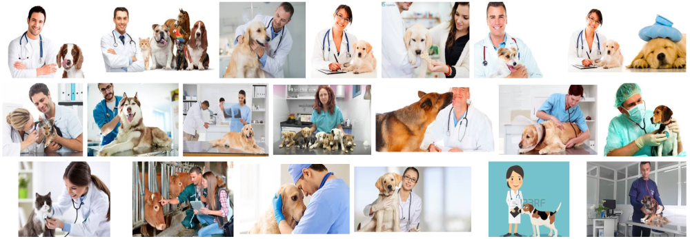 VETERINARIANS HOME DELIVERY BARCELONA